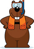 Cartoon Gopher Snorkeling Royalty Free Stock Photo