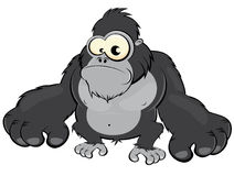 Cartoon gorilla. Cartoon illustration of gorilla with large arms and hands; isolated on white background Royalty Free Stock Photo