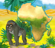Cartoon gorilla with continent map Royalty Free Stock Photos