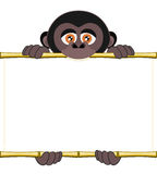 Cartoon gorilla cub holding a blank sheet of paper. Cute gorilla cub holding a blank sheet vector. All elements sorted and grouped in layers Stock Photo