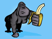 Gorilla Illustration Stock Images
