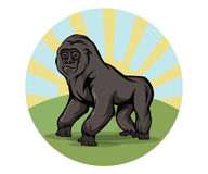Cartoon gorilla round emblem Stock Images