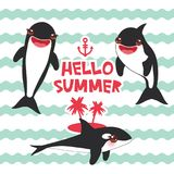 Cartoon grampus set. Hello Summer, orca, killer whale, sea wolf Kawaii with pink cheeks and positive smiling on blue waves sea oce royalty free illustration