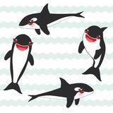 Cartoon grampus set. orca, killer whale, sea wolf Kawaii with pink cheeks and positive smiling on blue waves sea ocean background. Banner template, card design Stock Photos
