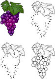 Cartoon grape. Vector illustration. Coloring and dot to dot game Royalty Free Stock Photo