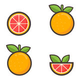 Cartoon grapefruit set Stock Photos