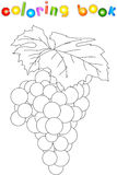 Cartoon grapes coloring book Royalty Free Stock Images