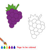Cartoon grapes to be colored Royalty Free Stock Photos