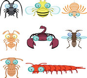 Cartoon graphic insects and arthropod Royalty Free Stock Images