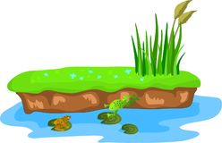 Cartoon grass and canes on a bump in the swamp. Frogs on the lilies Royalty Free Illustration