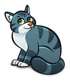 Cartoon gray cat. Cartoon gray striped cat on the white background Royalty Free Stock Image