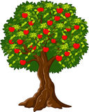Cartoon Green Apple tree full red apples Stock Photography