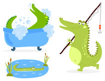 Cartoon green crocodile funny predator australian wildlife river reptile alligator flat vector illustration. Cartoon green crocodile funny predator and Royalty Free Stock Images