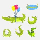 Cartoon green crocodile funny predator australian wildlife river reptile alligator flat vector illustration. Cartoon green crocodile funny predator and Royalty Free Stock Image
