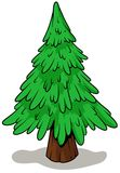 Cartoon green fir tree on white background. Vector icon Royalty Free Stock Photo