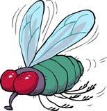 Cartoon green fly Stock Photography