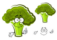 Cartoon green fresh broccoli vegetable Stock Photo