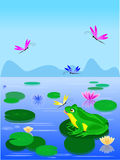 Cartoon green frog sitting on a lily leaf vector illustration
