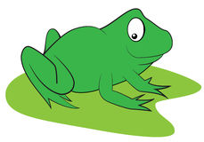 Cartoon green frog Stock Photography