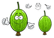 Cartoon green gooseberry fruit character Stock Images