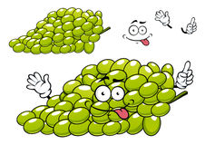 Cartoon green grape bunch character Stock Images