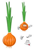 Cartoon green onion vegetable character. Healthful cartoon green onion vegetable character with fresh pungent leaves and golden bulb, for harvest or healthy Royalty Free Stock Image