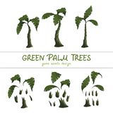 Cartoon green palm trees on a white background vector illustration