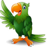 Cartoon green parrot waving Stock Images