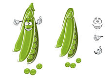 Cartoon green pea pod character Stock Images