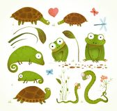 Cartoon Green Reptile Animals Childish Drawing. Brightly colored childish frogs turtles snakes lizards grass leaves. Vector illustration vector illustration