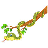 Cartoon green snake on branch Stock Images
