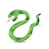 Cartoon Green Snakes Stock Photos