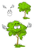 Cartoon green tree on grass Royalty Free Stock Photography