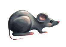 Cartoon grey mouse Royalty Free Stock Images