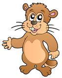 Cartoon groundhog Stock Image