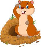 Cartoon groundhog looking out of hole. Illustration of Cartoon groundhog looking out of hole Royalty Free Stock Photo