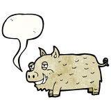cartoon hairy pig Royalty Free Stock Images