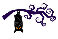 Cartoon halloween bat hanging on tree branch vector Royalty Free Stock Images