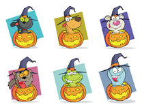 Cartoon halloween characters set Stock Photos