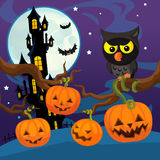 Cartoon halloween scene - pumpkins by night Royalty Free Stock Photography
