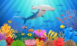 Cartoon hammer shark with Coral. Reef Underwater in Ocean.  illustration Royalty Free Stock Photo