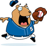 Cartoon Hamster Baseball Royalty Free Stock Image