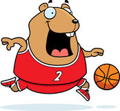 Cartoon Hamster Basketball Stock Images