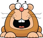 Cartoon Hamster Happy Royalty Free Stock Images