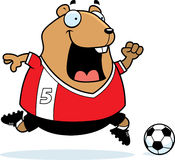 Cartoon Hamster Soccer Royalty Free Stock Images