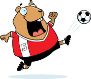 Cartoon Hamster Soccer Kick Stock Photography