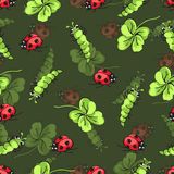 Cartoon hand drawing beetle ladybug, caterpillars and leaves clover seamless pattern, vector background. Funny insects Royalty Free Stock Images