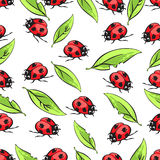 Cartoon hand drawing beetle ladybug and leaves seamless pattern, vector background. Funny insects on a white backdrop Royalty Free Stock Photo