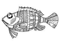 Cartoon, hand drawn,  doodle illustration of fish. Motive of sea life Stock Photo