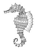 Cartoon, hand drawn,  doodle illustration of seahorse Stock Images